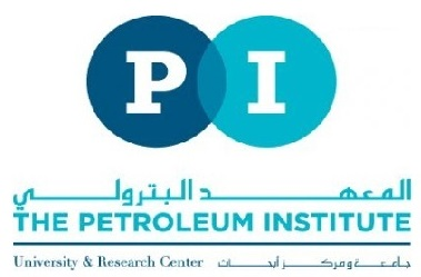 The Petroleum Institute